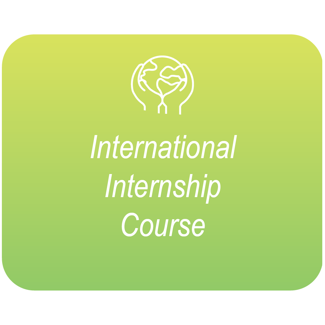 International Intern Course Green Box